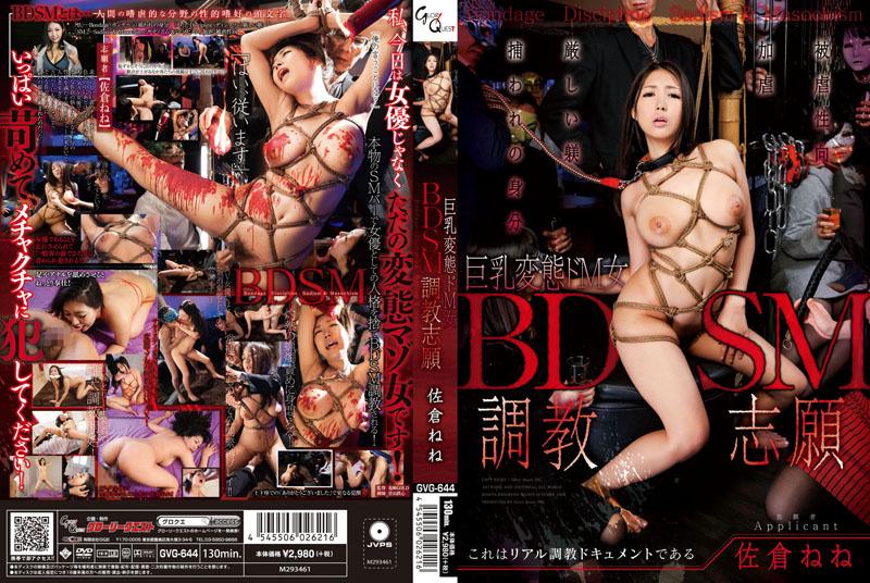 BDSM調教志願